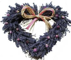 Lavender and Rose Buds Twig Heart (3 sizes available)